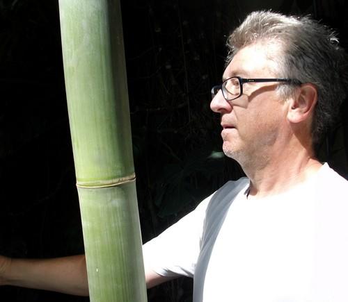 5 super samen sorten bambus rosa banane penis chili pagageienpflanze ebay. Black Bedroom Furniture Sets. Home Design Ideas